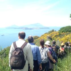 Natura ed escursioni a Capri
